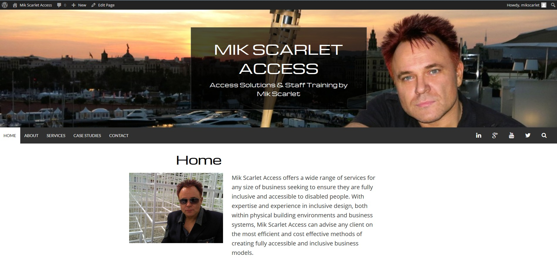 Screenshot of Mik Scarlet Acess Website